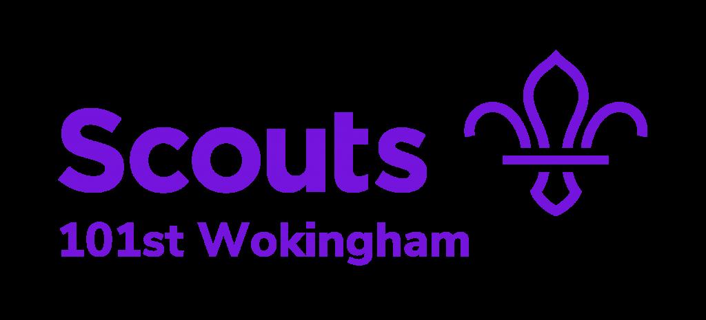 101st Wokingham Scouts Logo